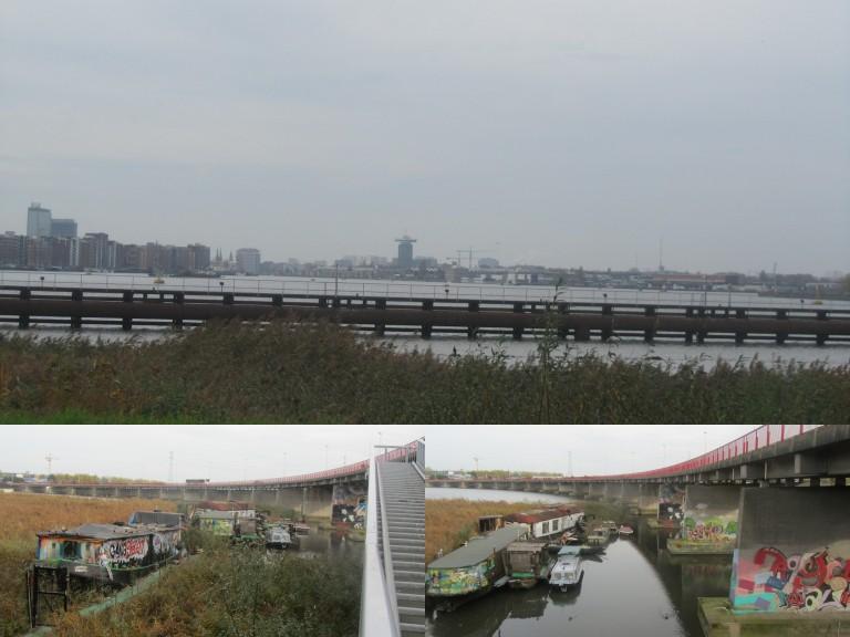 Trekvogelpad Broek-Schellingwouderbrug 8-11-2020